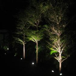 Led Landscape Lighting For Tree At Best Price In Mumbai Maharashtra Lighting Solutions