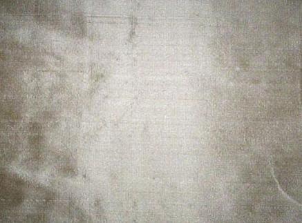 Exclusive Organza Silk Fabric