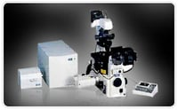 Confocal Laser Scanning Microscopes (C1si)