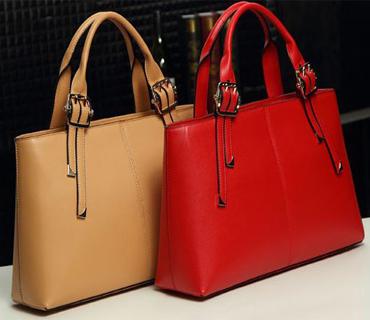 Handbag Ladies Bag