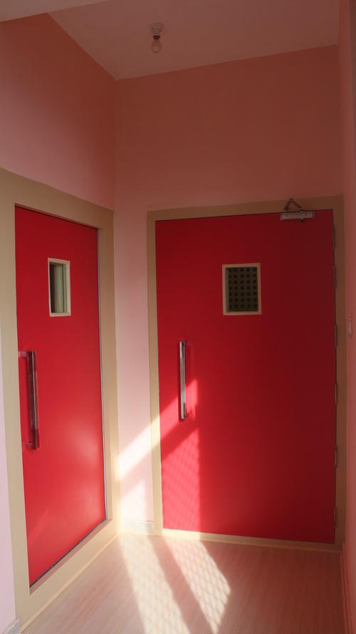 Durable Acoustics Door