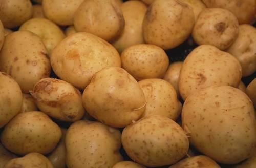 Potato in  New Area