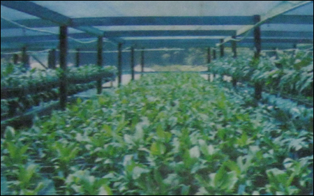 Horticulture Shade Nets