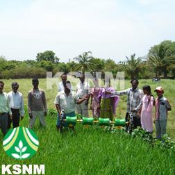 Rice Seed Planter