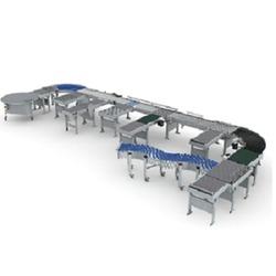 Flexi Belt Conveyor