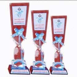 Appealing Acrylic Trophies