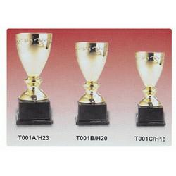 Stylish Brass Trophies