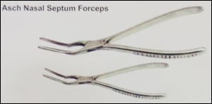 Small And Big Asch Nasal Septum Forceps