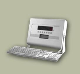Weighbridge Indicators IT Series 5410