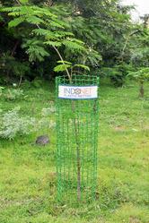 Plastic Tree Guard Fence