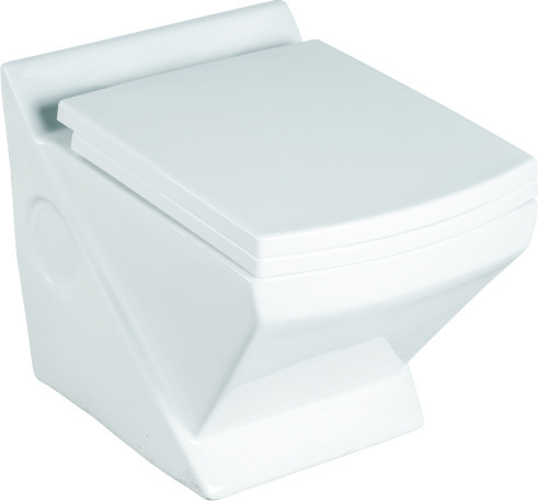 Residential Wall Mounted Toilet