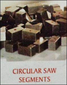 Circular Saw Segment