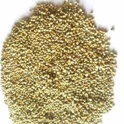 Hybrid Pearl Millet Seeds