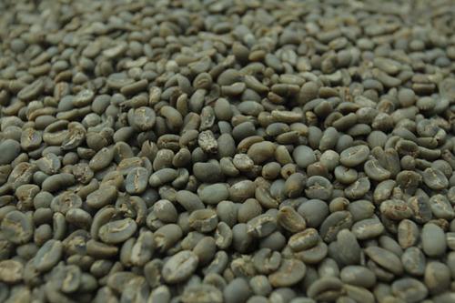 Sumatran Green Bean Arabica Coffee