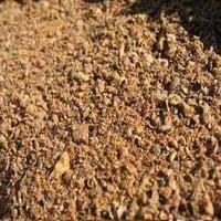 Cotton Seed Meal