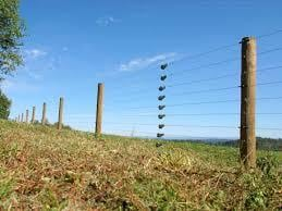 Electronic Fencing
