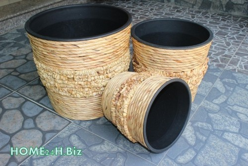 Hyacinth Plastic Pots