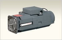 Electro Spindle Motor