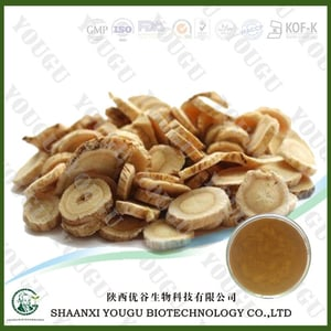 Astragalus Root Extract,Astragalus Membranaceus Extract Polysaccharides