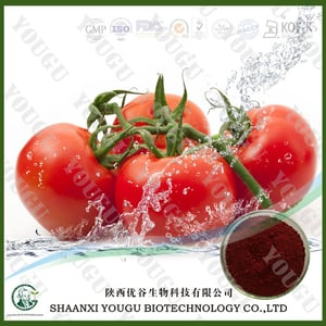 Pure Natural Tomato Extract