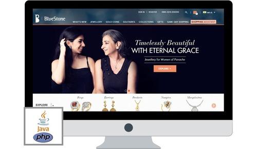 Bluestone Website Development Service in Adarsh Nagar