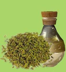 Fennel Seed Oil in  Akota (Vdr)