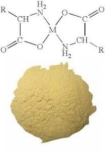 Zinc Glycine Amino Acid Chelate