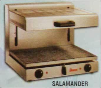 Salamander in  Bommanahalli