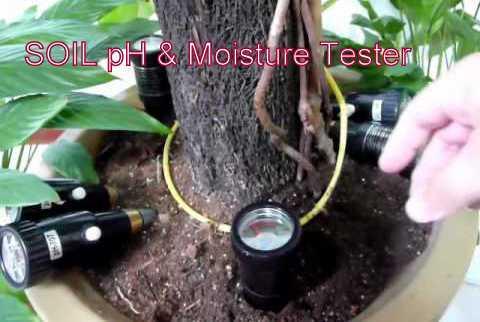 Soil Ph Moisture Tester