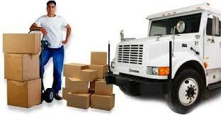 Domestic Packer & Mover Service in  5-Sector