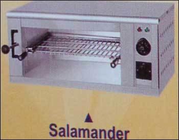 Salamander in  West Mambalam