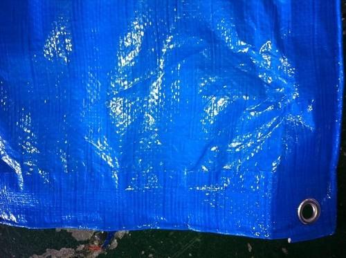 HDPE Plastic Sheet Tarpaulin in  Rakhial
