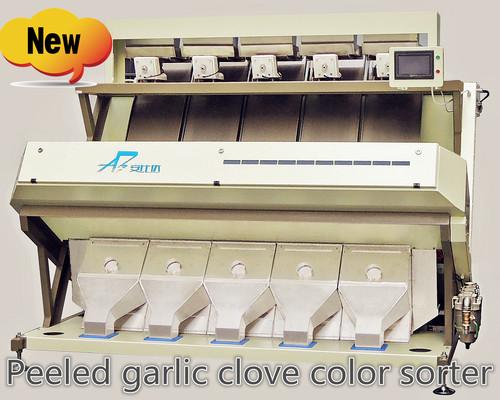 Peeled Garlic Clove Color Sorter Machine