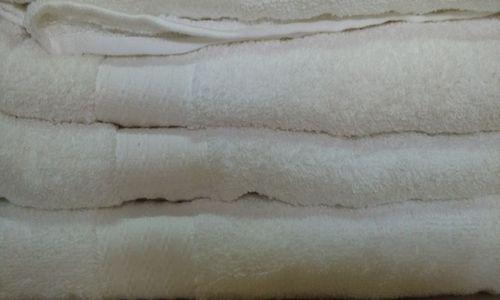 Export Surplus White Towels at Best Price in Mumbai