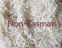IR-64 Raw Rice