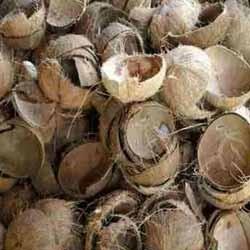 Husk Coconut Shell
