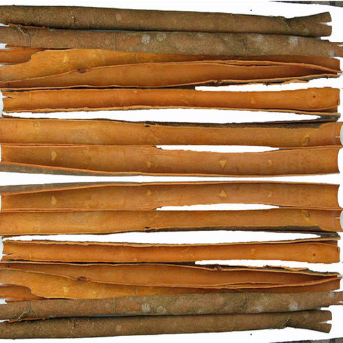 Cinnamon  in   Vytilla