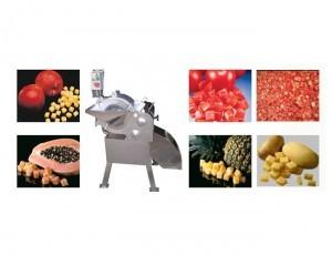Vegetable Dicing Machine