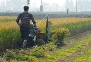 1000mm Cutting Width Wheat And Rice Harvester And Bundler And Binder Machine