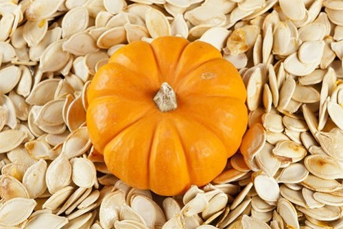 Shine Skin Pumpkin Seeds (2016 Crop)