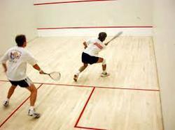 Badminton Sport Flooring in  Jogeshwari (W)