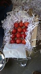 Bhagwa Pomegranate in  Pune-Solapur Road