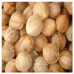 Fresh Coconut in Chennai, Tamil Nadu, India - Fresh Jasmines