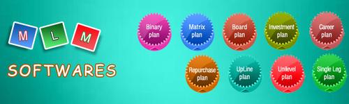 MLM Development Solution Service