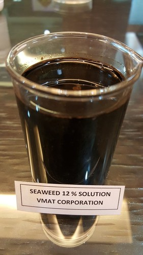 Seaweed Solution (12%)