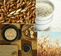 Food Grain Products