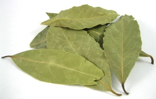 Laurel Bay Leaf in   2817 Sok. No.65/A Mersinli