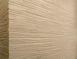 Stone Finish Wall Texture Paints