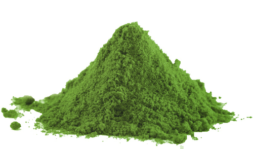 Pure Spirulina Powder in   Melur