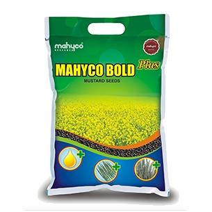 Bold Plus Black Mustard